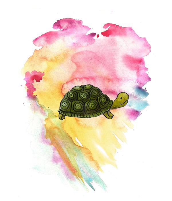 Gustav de schildpad